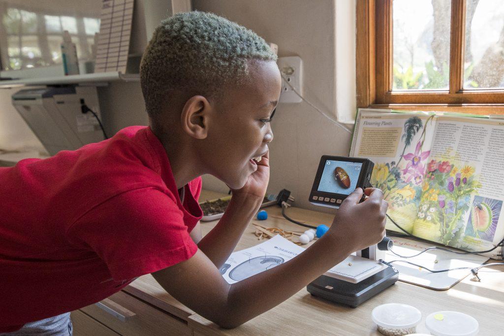 Boy at digital microscope